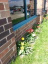 These border tulips are one of about 20 different spaces around Cornerstone that the Garden Club is responsible for.
