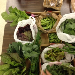 In this shot, we donated the peas, bunched mustard greens, tri-colored lettuce, radishes, and chives.