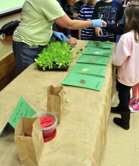 Students tasting lettuce samples from the farmer who grew it!