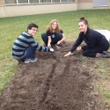 IB students plant garlic